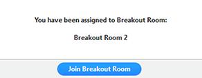 Breakout room screen